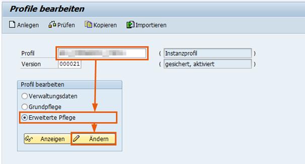 Bearbeitung der Profilparameter in der Transaktion RZ10