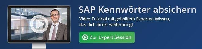 SAP Kennwörter absichern