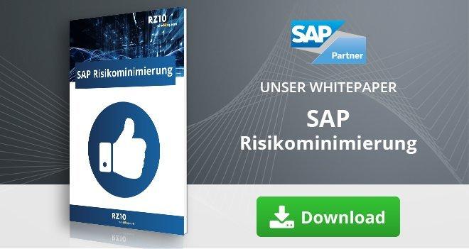 SAP Risikominimierung