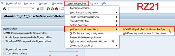 RZ21 - CCMSPING-Verfügbarkeitsüberwachung konfigurieren
