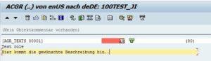 7. SE63 - Eingabe des AGR_Texts