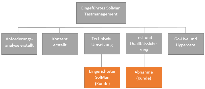 Test Management mit dem SAP Solution Manager