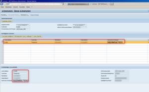 Lizenzverwaltung im NetWeaver Administrator (NWA) des SAP AS JAVA