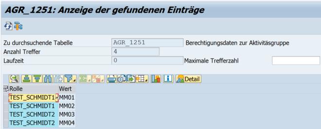 Transaktionen mehrerer Rollen (SE16N)
