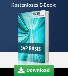 E-Book SAP Basis