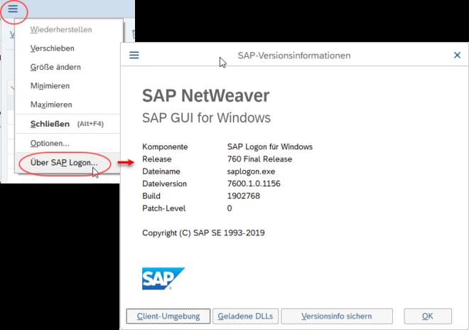 Versionsinformationen in der SAP GUI