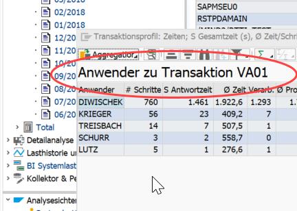 Transaktionsnutzung im SAP ermitteln