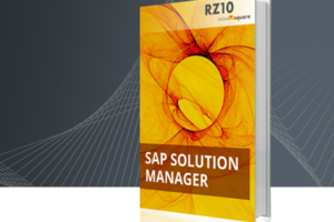 SAP Solution-Manager E-Book