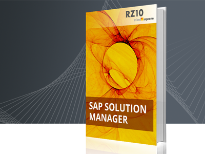 SAP Solution-Manager E-Book