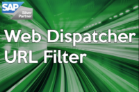 sap-web-dispatcher-url-filter-article-image