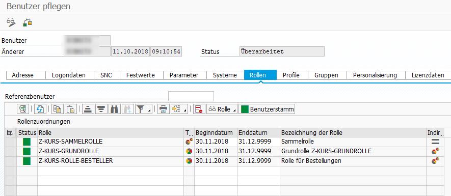 SAP Rollentypen
