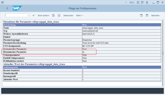 Überprüfung der dynamischen Parameter im RZ11 Bildschirm
