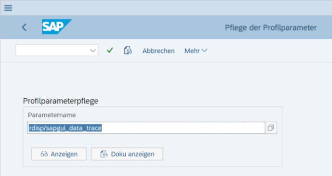 Beispiel: Profilparameterpflege in Transaktion RZ11