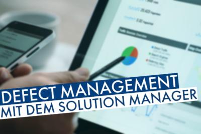 Defect Management Solution Manager